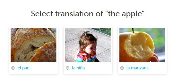 Duolingo Prompts User